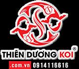 Thiên Dương Koi