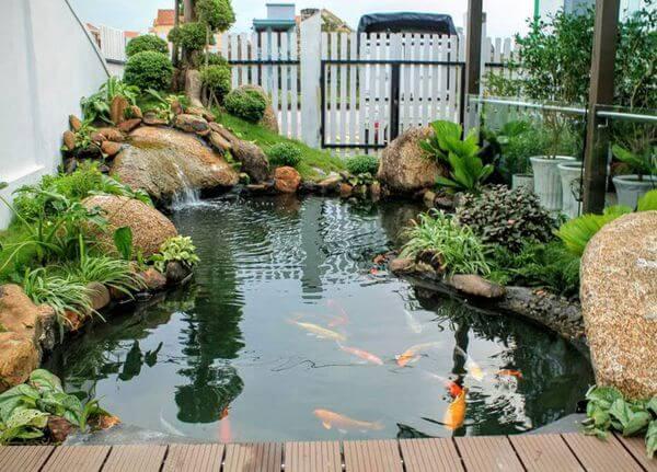Hệ thống lọc hồ cá Koi bao gồm những bộ phận gì