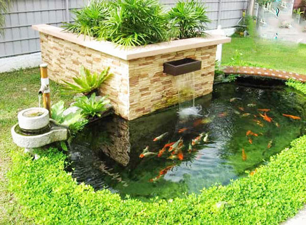 Mẫu hòn non bộ nuôi cá đơn giản tiết kiệm chi phí