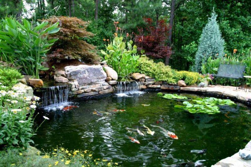 Mẫu thiết kếhòn non bộ ngoài trời đẹp có thác nước kết hợp hồ cá Koi