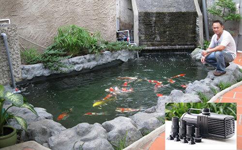 Top thương hiệu máy bơm hồ cá Koi chất lượng