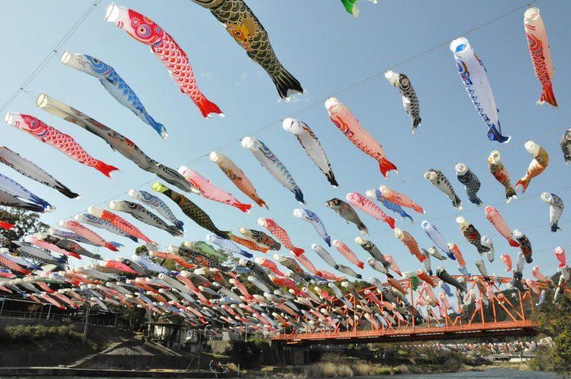 Cá chép Nhật trong văn hoá Nhật Bản
