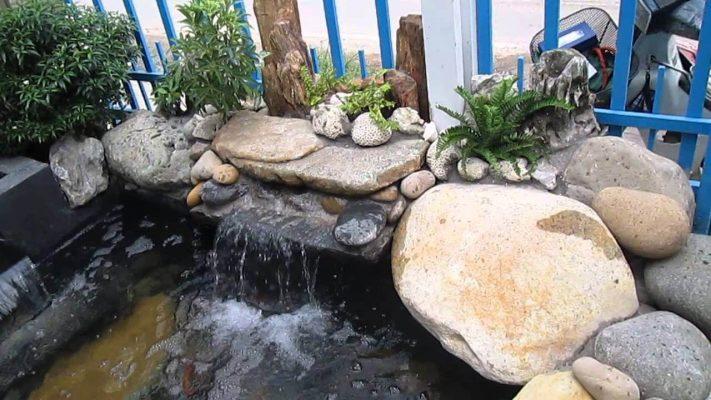 Thiên Dương Koi - đơn vị chuyên cung cấp đa dạng các loại đá làm hồ cá koi chất lượng, giá cả cạnh tranh trên thị trường