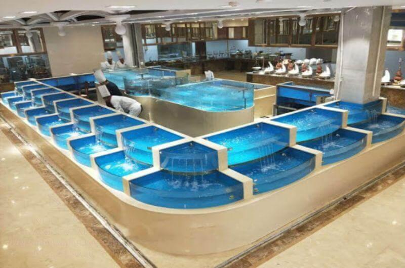 Bể hải sản bao gồm những thiết bị gì