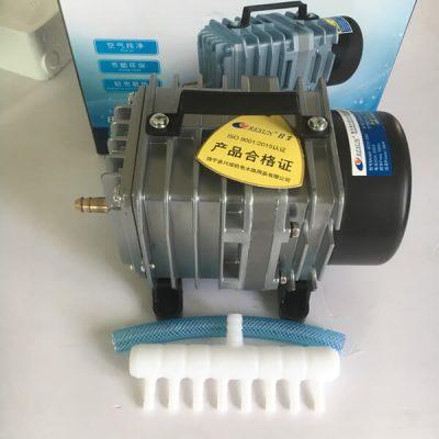 Công dụng và ưu điểm của máy tạo oxy đối với bể cá