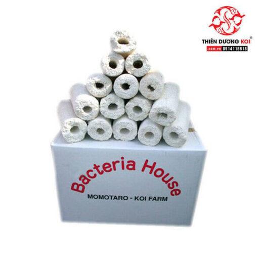 gốm lọc bacteria house momotaro