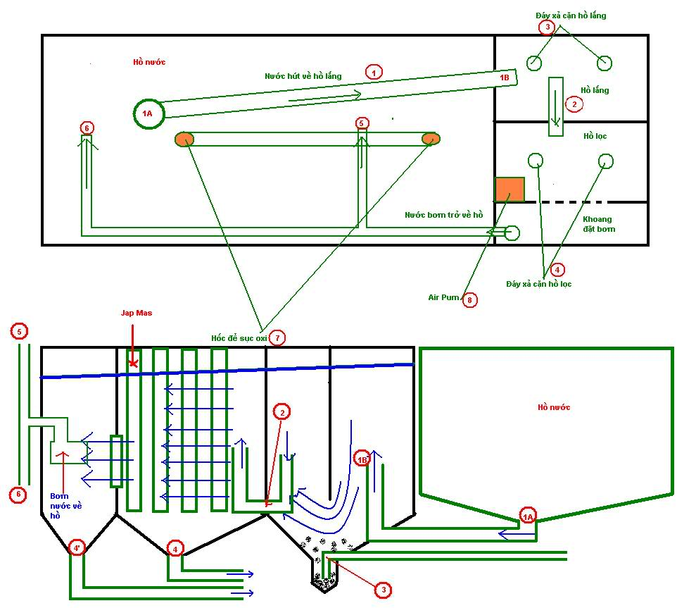 Hệ thống lọc nước hồ cá bao gồm những gì