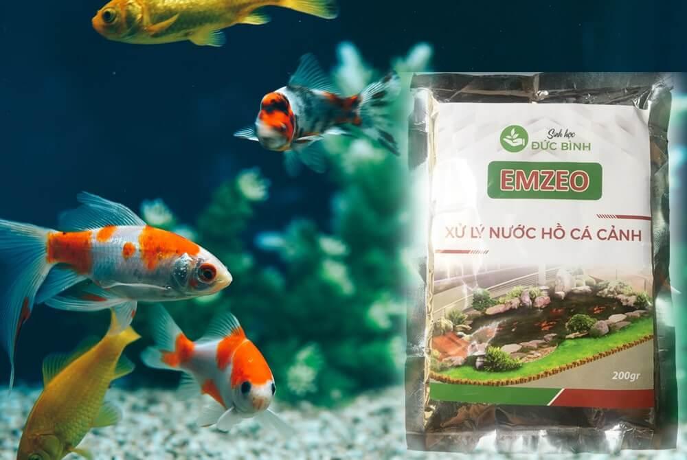 Lưu ý khi sử dụng thuốc làm trong nước hồ cá