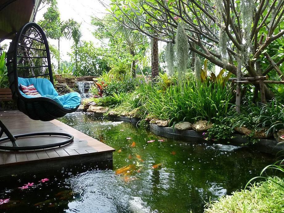 Mẫu hồ cá sân vườn
