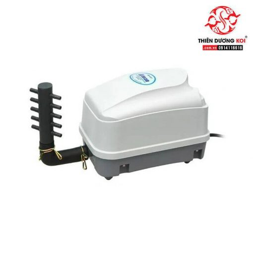 máy oxy hồ cá atman hp-8000