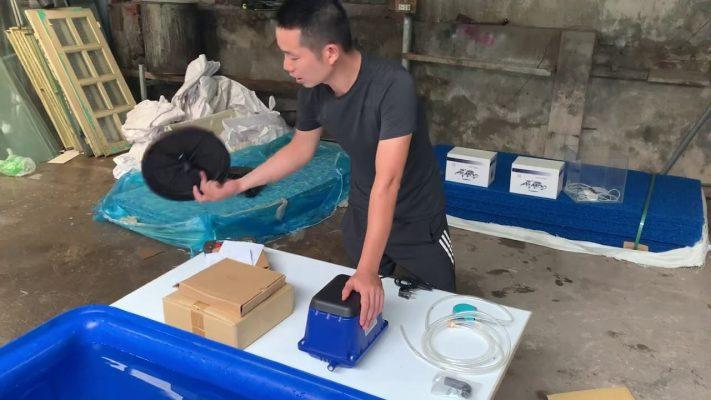 Máy sủi oxy AIRMAC Đài Loan