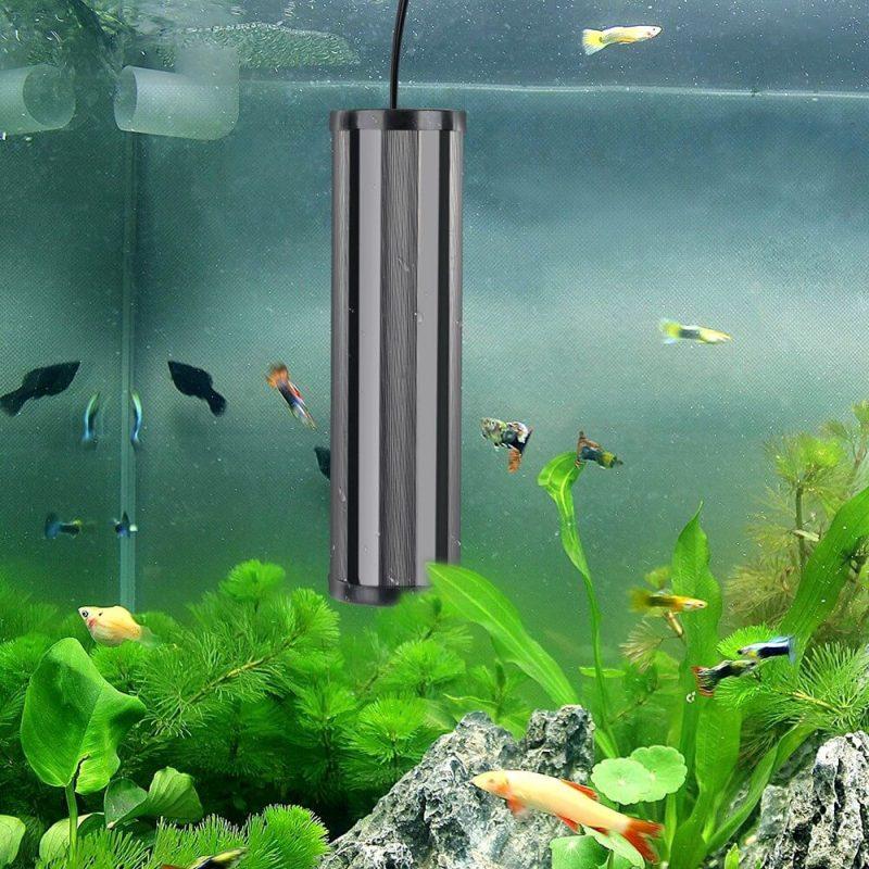 Những cách sử dụng đèn UV cho hồ cá hiệu quả