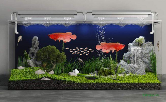 Những điểm cần đặc biệt lưu ý khi thiết kế và thi công hồ kính nuôi cá
