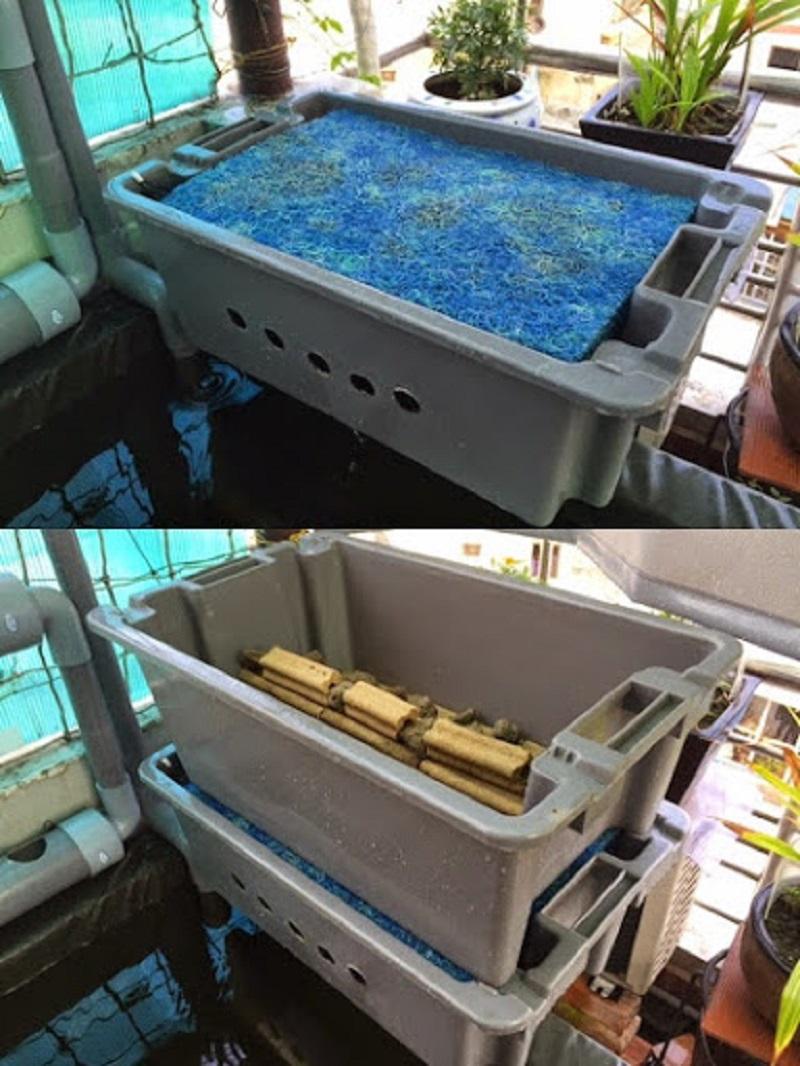Phương thức hoạt động của hệ thống lọc nước hồ cá Koi