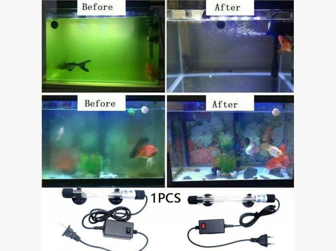 Tác động của đèn UV đến hồ cá