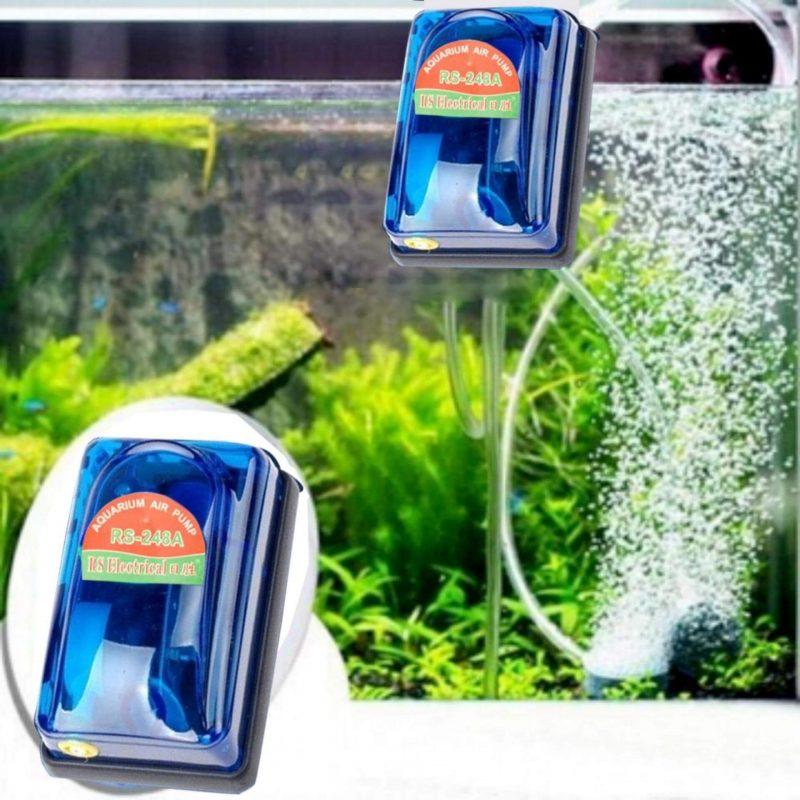 Tác dụng của máy sục oxy cho bể cá