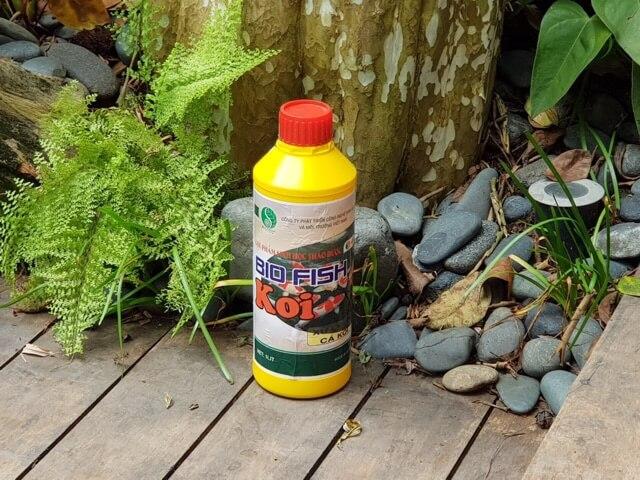 Biofish Koi - Chế phẩm vi sinh chuyên dùng cho hồ cá Koi
