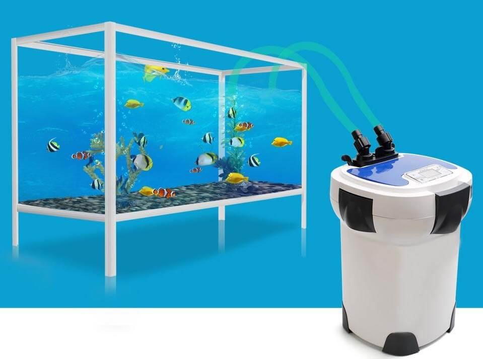Cách lựa chọn máy lọc thùng cho hồ cá