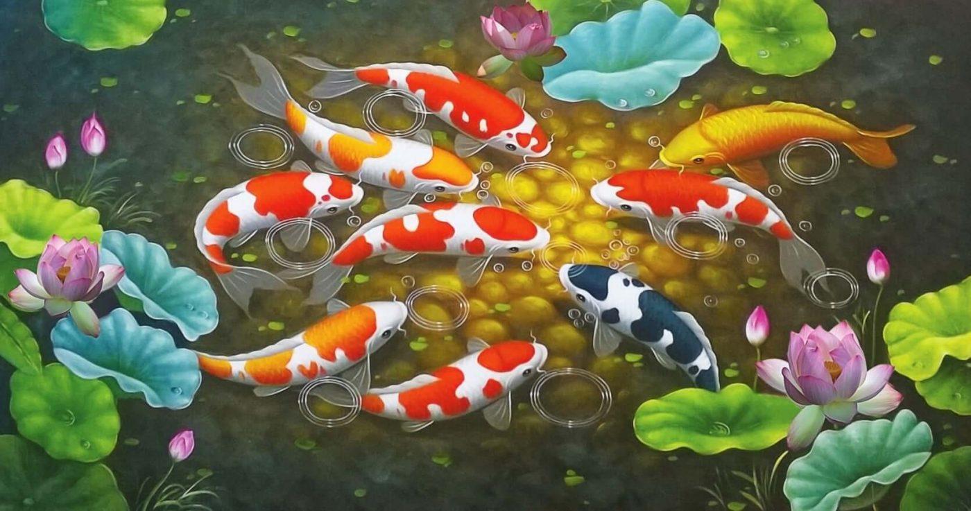 Một số loài cá Koi được ưa chuộng