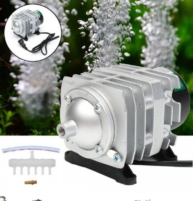 Tác dụng của máy sủi oxy công suất lớn cho bể cá